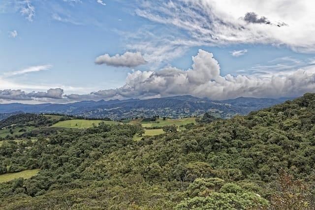 Corporaciones Autónomas Regionales del Pacífico ratifican alianza para proteger los bosques
